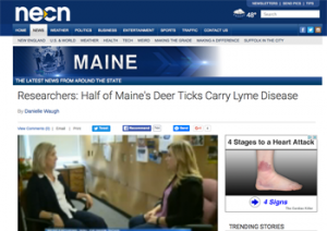 NECN interview with Danielle Waugh